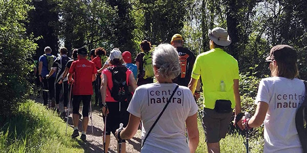 You are currently viewing Nordic Walking Challenge