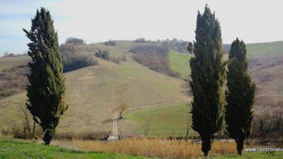 Castelli perduti nella Valle del Savena