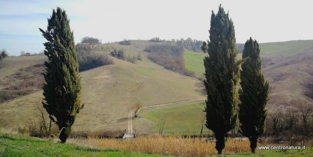 You are currently viewing Castelli perduti nella Valle del Savena