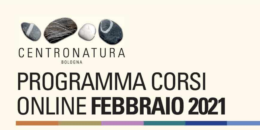 You are currently viewing Corsi di palestra online a febbraio