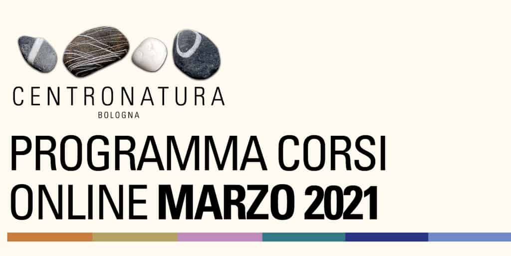 You are currently viewing Corsi in palestra online marzo 2021