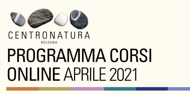 You are currently viewing Corsi di palestra online aprile 2021