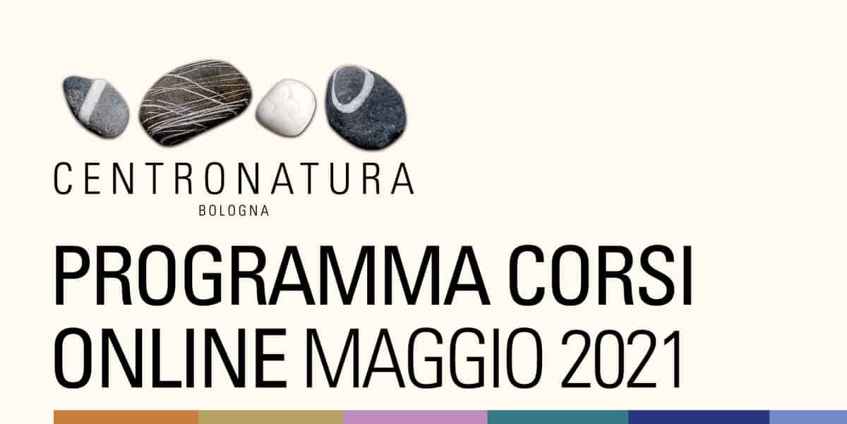 You are currently viewing Corsi di palestra online maggio 2021